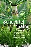 Schachtelhalm (Amazon.de)