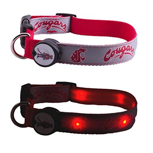 DogEGlow Hundehalsband Washington, State University Cougars, beleuchtetes LED-Licht, Größe M, 25,4 x 38,1 cm (State Washington Cougars University)