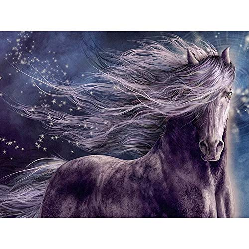 DMMASH Diamond Painting Pferd 5D Diamant Stickerei Malerei,50 * 60Cm