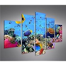 De Imágenes sobre lienzo Acuario Peces Mar Agua Doktor peces tropicales MF XXL Póster Lienzo Cuadro de decoración salón Marca Islandburner