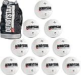 derbystar 10er Ballpaket FB Brillant TT