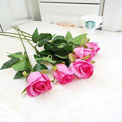 BO-Garden 5379418269565