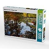 Spiegelung im See - Ohligser Heide 1000 Teile Puzzle quer (CALVENDO Natur)