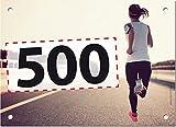 500 Startnummern Go, Papier classic-race, Format 20 x 14,5 cm (ca. DIN A5), nummeriert von Nummer 1