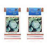 Best Lettuces - Pepper Agro Lettuce Iceberg Vegetable seeds 2 packs Review