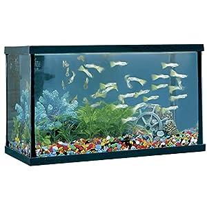 ICA HP8 Happy Fish Aquarium, Black