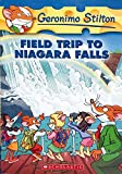 Field Trip to Niagara Falls: 24 (Geronimo Stilton)