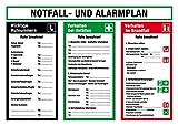 Aushang am Arbeitsplatz - Notfall- und Alarmplan - Kunststoff - 50 x 70 cm