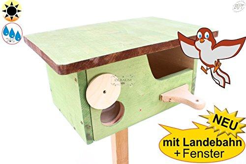 Nistkasten + Überwinterungsplatz Vogelhaus, moosgrün MIT LANDEBAHN + Fixierleisten + Holzdach zum Öffnen in grün, ca. 35 x 23 x 20 cm, Anflug rund sehr groß ca. 45-48 mm für Stare, ab (46 Outdoor-tv)