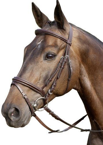 USG Trense Classico, engl. RH, braun, Pony