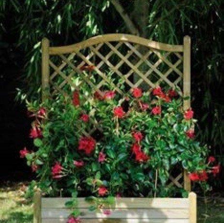 Bac à fleurs LIERRE arc 80