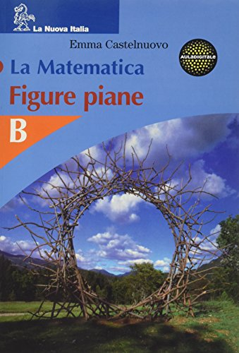La matematica. Figure piane. Volume B. Per la Scuola media