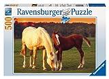 Ravensburger 14347 - Schöne Pferde
