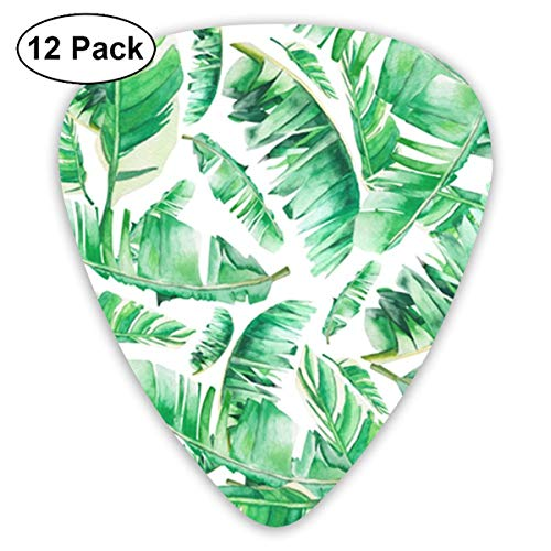 Floral Tropical Leaves Summer Palm 351 Shape Classic Celluloid Guitar Pick For Electric Acoustic Mandolin Bass (12 Count) -