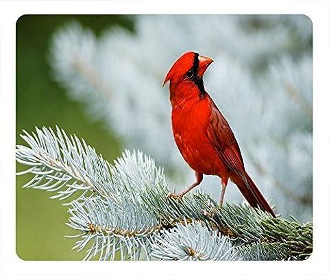L'oiseau bateau sur la branche Red Bird dans l'arbre Tapis de souris League of Legends Mousemats 19,1x