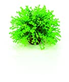 Oase biOrb Blumenball, grün