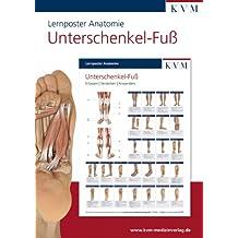 Lernposter Anatomie: Region Unterschenkel - Fuß