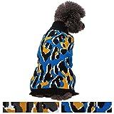 Best Blueberry Pet Pet Leopards - Blueberry Pet Bold & Trendy Leopard Print Dog Review