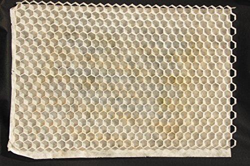 2 Stück Kiesstabilisation Nidagravel weiß 1200x800x29 mm = 1,92 m²