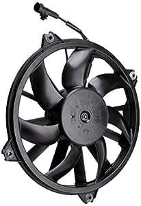 Valeo 696091 Ventilateur, refroidissement du moteur