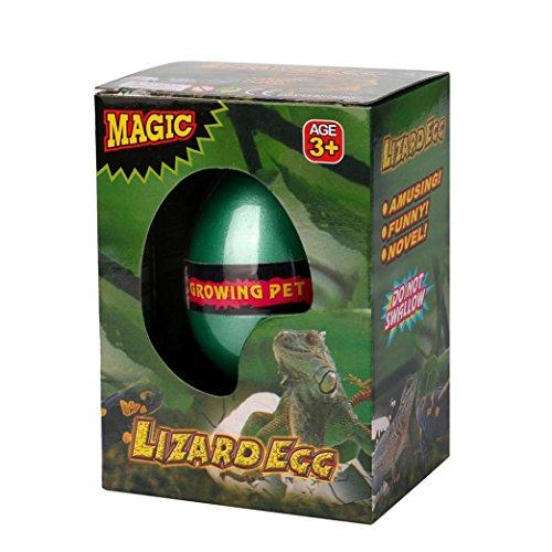 Xshuai 6 * 4,5 cm Big Magic Schlüpfen Dinosaurier Hinzufügen Wasserzucht Dino Eier Aufblasbare Kid Weihnachten Spielzeug Für kid wissenschaftliche praxis (E) Kleinkind-mädchen-besen-set