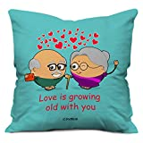 Valentine Gifts for Boyfriend Girlfriend Fiance Spouse Blue 12X12 Printed Cushion with Filler Insert Love is Growing Old with You Gift for Him Her Bir best price on Amazon @ Rs. 249