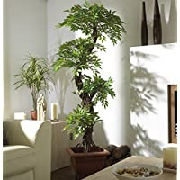 Amazon.co.uk: Artificial Trees: Home & Kitchen