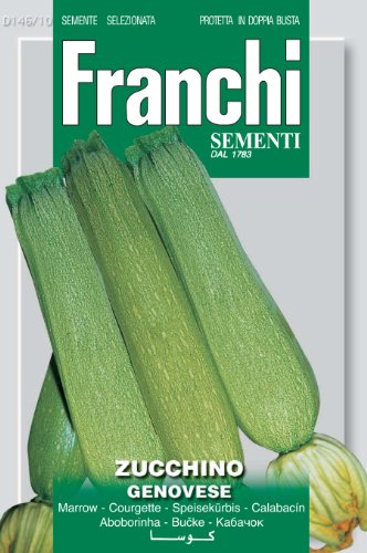 Franchi Genovese Courgette