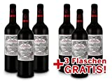 Domaine de Saint-Nazaire   Côtes de Duras   Frankreich   Vorteilspaket 6 für 3   Rotwein