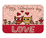 VICKKY Doormat ValentineDay Set Owlin Love Print Cute PartnerCoupleBohemian Style HeartFlowerDotFabric Bathroom Decor with Hook Pink Red Yellow 23.6 W X 15.7 W Inches