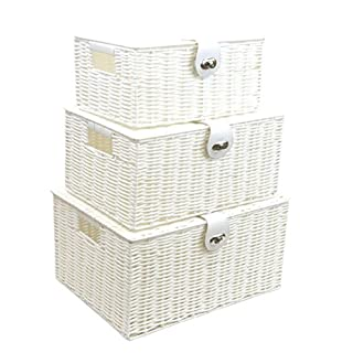 Arpan Set of 3 Resin Woven Storage Basket Box With Lid & Lock (White)
