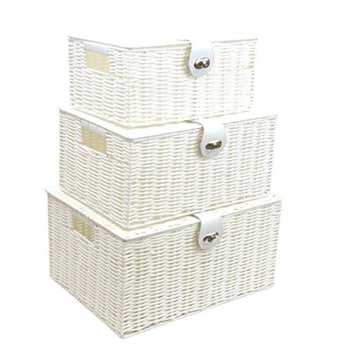 Arpan Set von 3Kunstharz Woven Aufbewahrungskorb mit Deckel & Lock–Weiß