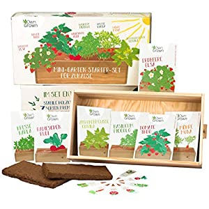 Großes Saatgut Anzuchtset mit Holzkiste (37x20x10cm) und 7 Sorten, Gemüse und Kräuter Samen Anzucht Set für die Fensterbank als Geschenk für Kinder und Familie, Mini-Garten Starter Kit von OwnGrown