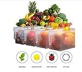 miyare Küche versiegelt Frischeres Kühlschrank Speisen Aufbewahrungsbox Container mit Griff