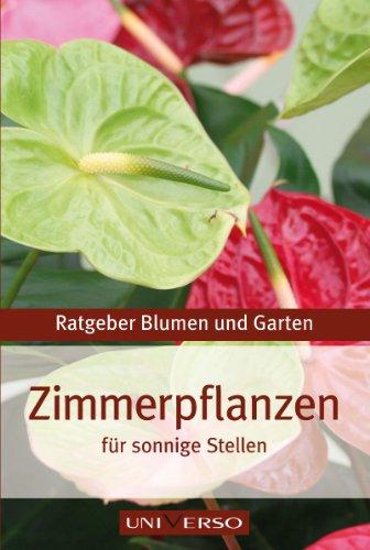 ratgeber-garten-zimmerpflanzen-fur-sonnige-stellen