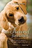 Ein Freund fürs Leben: Was Hunde uns über Gott, das Leben und die Liebe zeigen