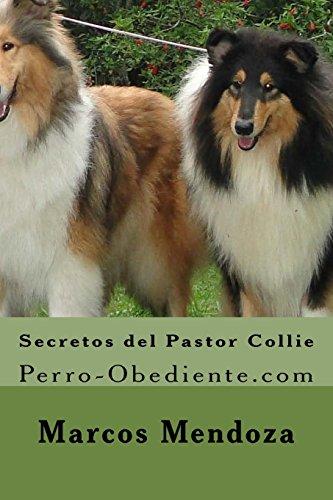 Secretos del Pastor Collie: Perro-Obediente.com