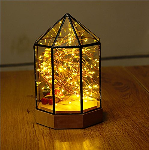 fwef-scandinavian-glass-house-cabina-lights-alberi-alberi-luminoso-fiori-regali-creativi-di-complean