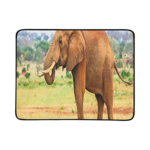 KAOROU Elefant Tsavo Ostnationalpark Kenia tragbare und Faltbare Deckenmatte 60x78 Zoll handliche Matte für Camping Picknick Strand Indoor Outdoor-Reise