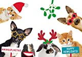 Talking Tables ENT-PET-SELFIEV2 Party Dress Up | Fotobox Requisiten für Haustiere | Weihnachten Kostüm für Hunde und Katzen | 20 Stück und Schnee Szene, Multifarbe