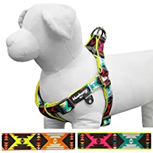 Blueberry Pet Step-in Extravagant Green Vintage Tribal Pattern Neoprene Padded Dog Harness, S/M