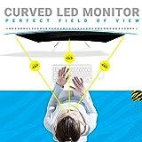 Zebronics 31.5 inch (80cm) LED Monitor (White)
