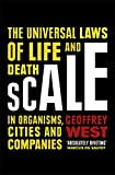 #9: Scale: The Universal Laws of Growth, Innovation and Sustainability in Organisms, Economies, Cities and Companies