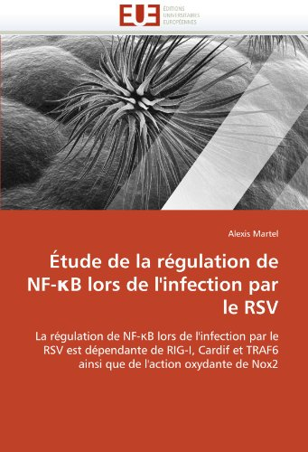 Étude de la régulation de nf- b lors de l''infection par le rsv