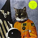Surfing the Void [Vinyl] [Vinyl LP]