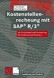 Kostenstellenrechnung mit SAP R/3: Mit Testbeispiel und Customizing für Studenten und Praktiker (Ausbildung und Studium)