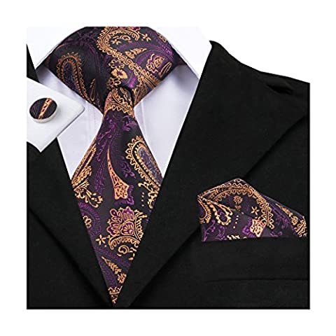 Hi-Tie Mens Purple Brown Paisley Woven Silk Tie Necktie Hanky Cufflinks set