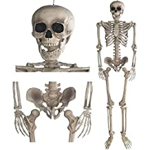 Decorazione Scheletro 160cm–Party & decorazioni di Halloween tutto il corpo Horror Skeleton
