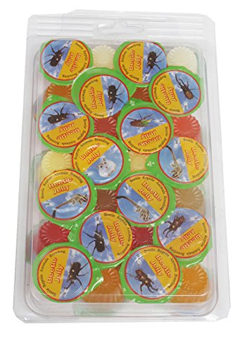 namiba-terra-70219-vorteilspack-28-stuck-jungle-shop-beetle-insect-jelly-mix-fur-insekten-und-kafer-
