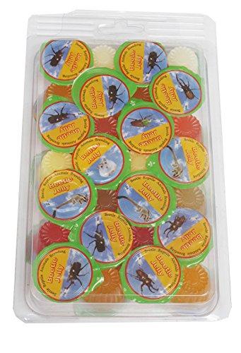 Namiba Terra 70219 Vorteilspack, 28 Stück Jungle Shop Beetle & Insect Jelly Mix für Insekten und Käfer, 6 Sorten, 16 g pro Stück